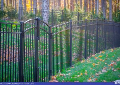 "Eastern Ornamental 54 inch tall aluminum fence 54202 shown with a ""1 over 2"" continuous arch over 2 leaves of this double drive gate."