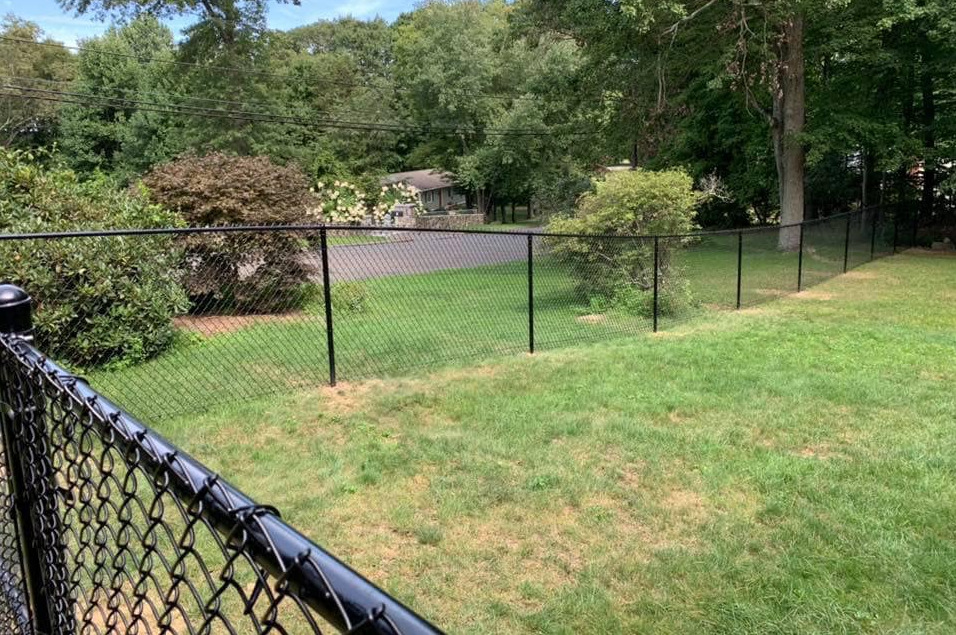 Black five foot tall chain link with 1-3/8 top rail.